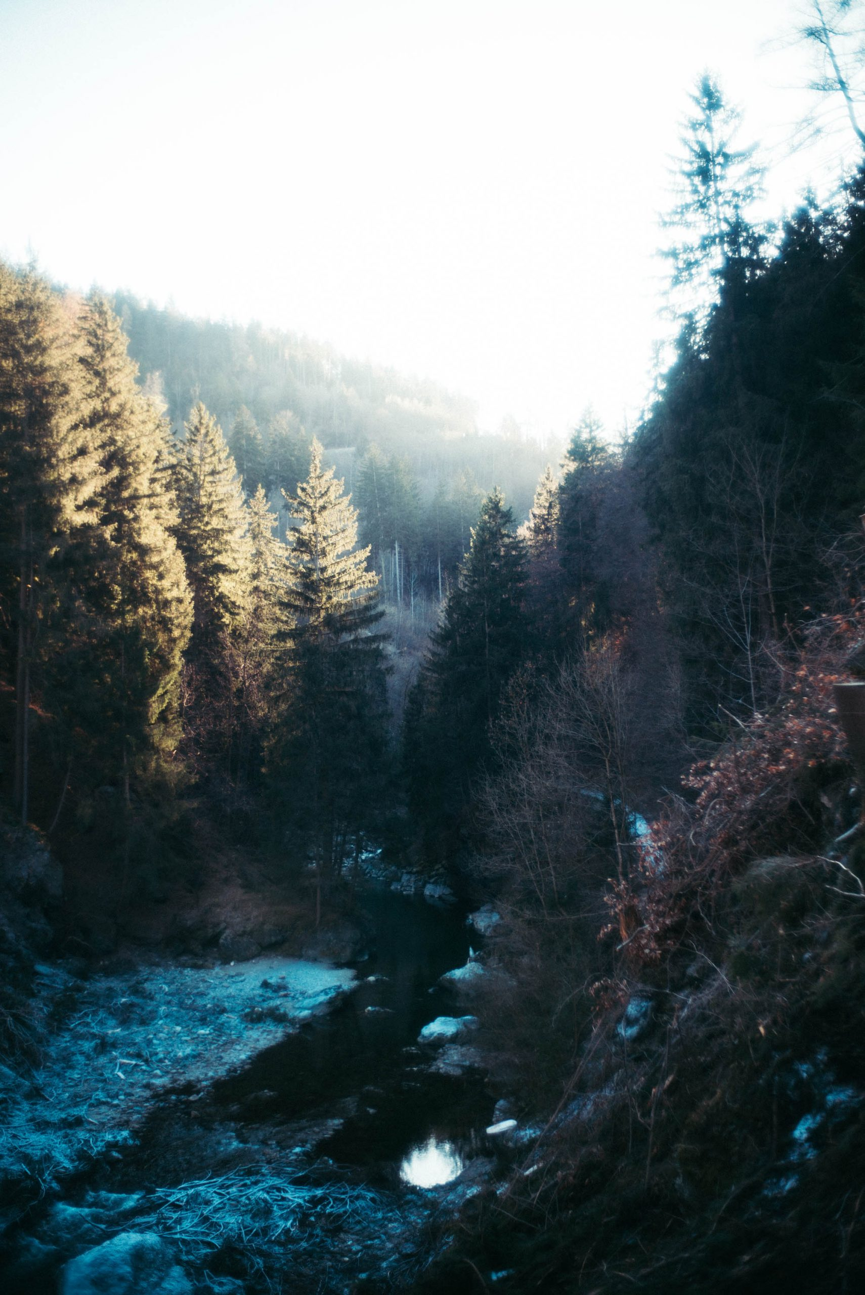 Innsbruck-web-84